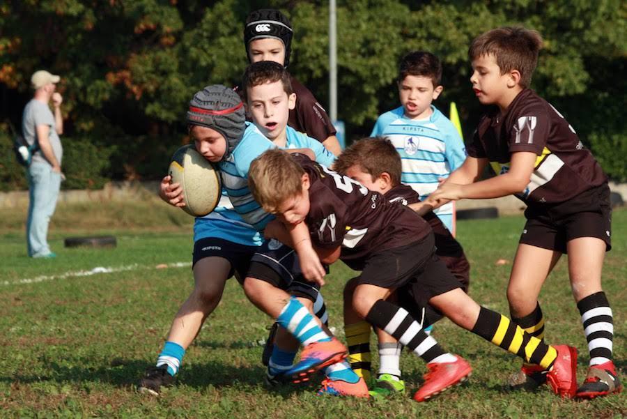 Torneo della Castagna, Under 8